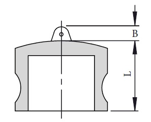 DP Dust Plug
