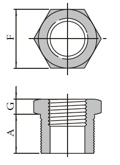 Forged High Pressure Fittings T27