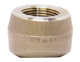THREADOLET Forged High Pressure Fitting